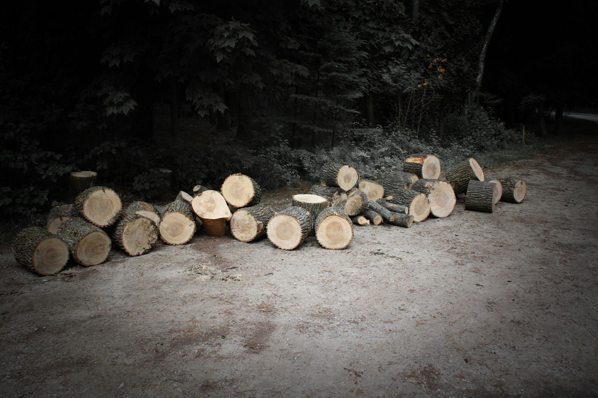 08 Nature Trails Cut Lumber